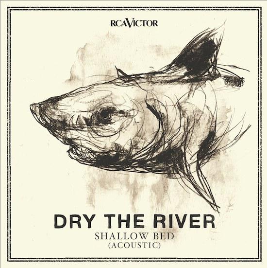 dtr-artwork-shallowbed-acoustic